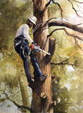 The Tree Guy print