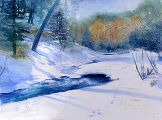 Bear Creek in Kittredge