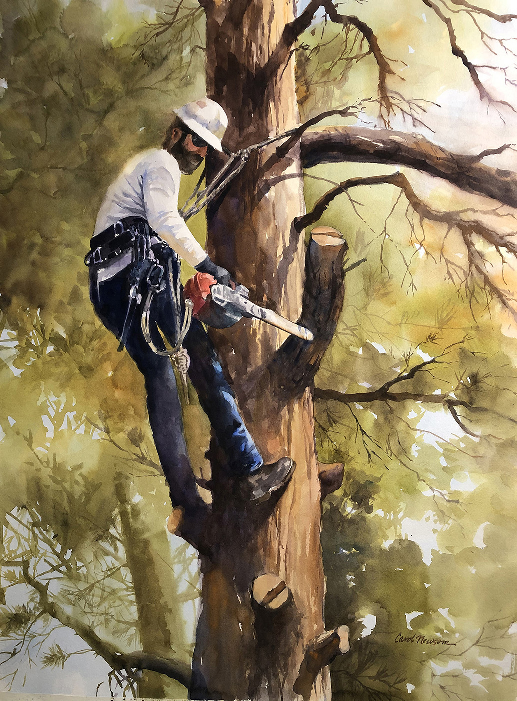 One day a guy came to our house and spent the day cutting down a tree. To me, it looked like he was posing for a painting. Watercolor...