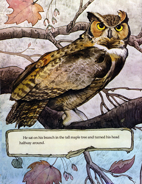 This book was about the adventures of a great horned owl who lived in a garden.