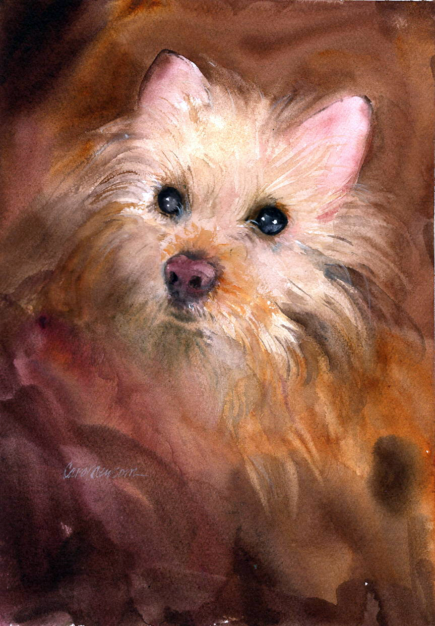 I painted this little guy's sweet face as a demo for one of my classes.  Watercolor 11 x 15